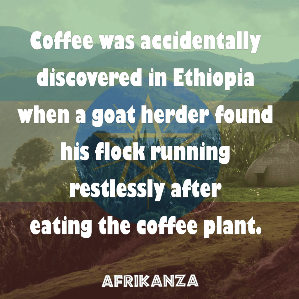 Fact-6-Coffee-was-discovered-in-Ethiopia