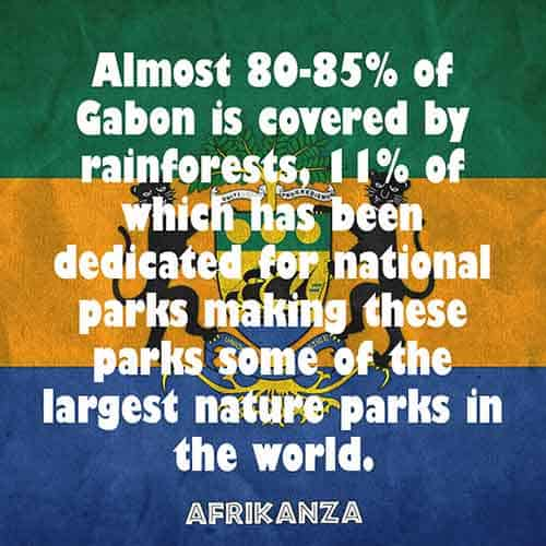 Almost 80-85% of Gabon is covered by rainforests, 11% of which has been dedicated for national parks making these parks some of the largest nature parks in the world
