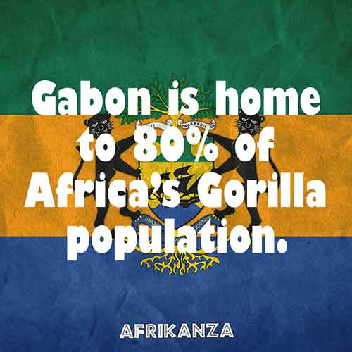 Gabon is home to 80% of Africa's Gorilla population
