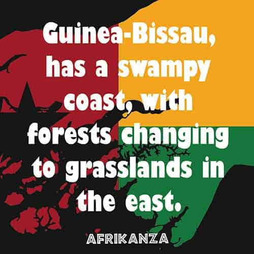 Guinea-Bissau has a swampy coast, with forests changing to grasslands in the east