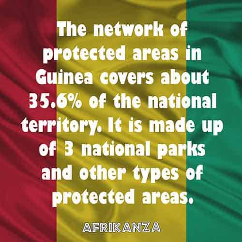 The network of protected areas in Guinea covers about 35.6% of the national territory. It is made up of 3 national parks and other types of protected areas
