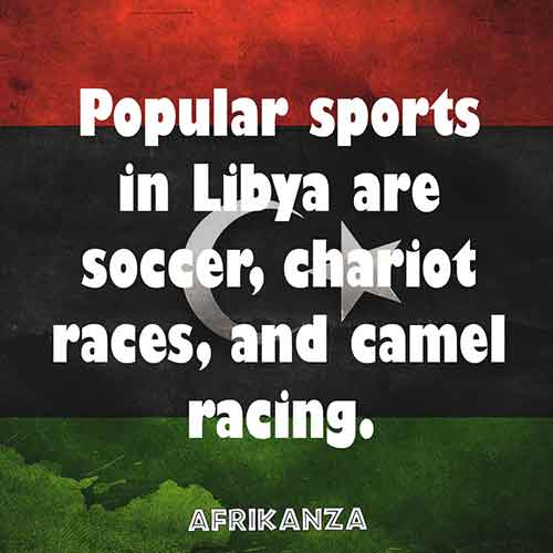 Popular sports in Libya are soccer, chariot races, and camel racing