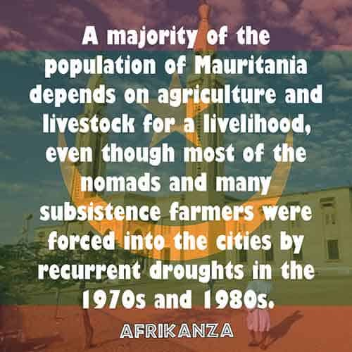A majority of the population of Mauritania depends on agriculture and livestock for a livelihood, even though most of the nomads and many subsistence farmers were forced into the cities by recurrent droughts in the 1970s and 1980s