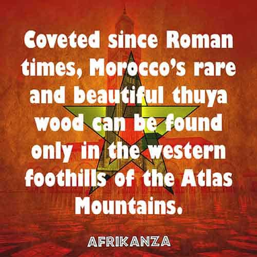 Coveted since Roman times, Morocco's rare and beautiful thuya wood can be found only in the western foothills of the Atlas Mountains