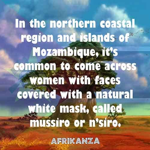 In the northern coastal region and islands of Mozambique, it's common to come across women with faces covered with a natural white mask, called mussiro or n'siro