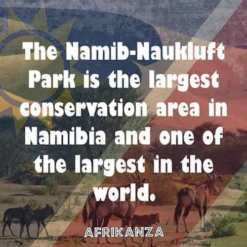 The Namib-Naukluft Park is the largest conservation area in Namibia and one of the largest in the world