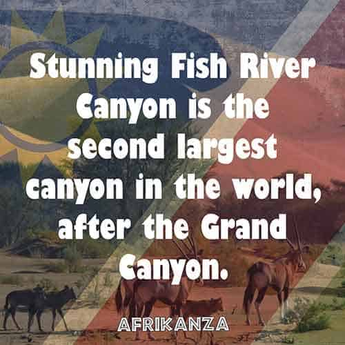 Stunning Fish River Canyon is the second largest canyon in the world, after the Grand Canyon