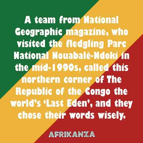 A team from National Geographic magazine, who visited the fledgling Parc National Nouabalé-Ndoki in the mid-1990s, called this northern corner of The Republic of the Congo the world's 'Last Eden', and they chose their words wisely