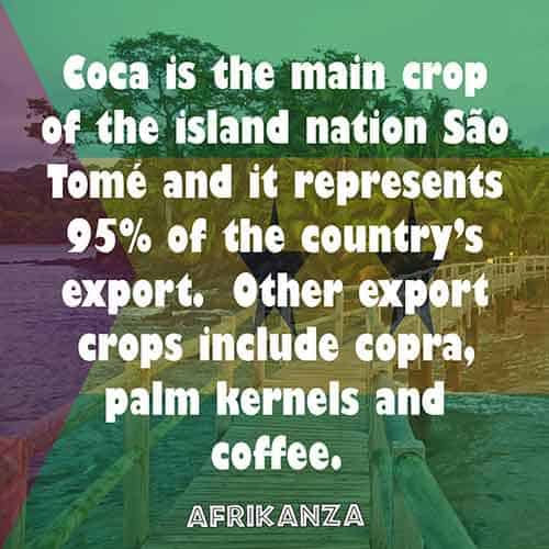 Coca is the main crop of the island nation São Tomé and it represents 95% of the country's export. Other export crops include copra, palm kernels and coffee.