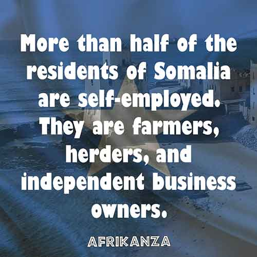 More than half of the residents of Somalia are self-employed. They are farmers, herders, and independent business owners.