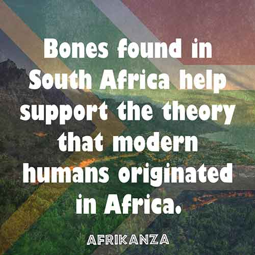 Bones found in South Africa help support the theory that modern humans originated in Africa.
