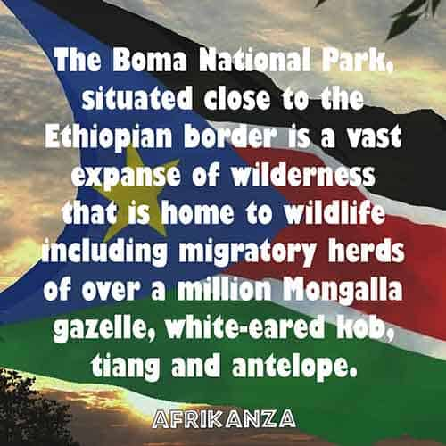 The Boma National Park, situated close to the Ethiopian border is a vast expanse of wilderness that is home to wildlife including migratory herds of over a million Mongalla gazelle, white-eared kob, tiang and antelope.