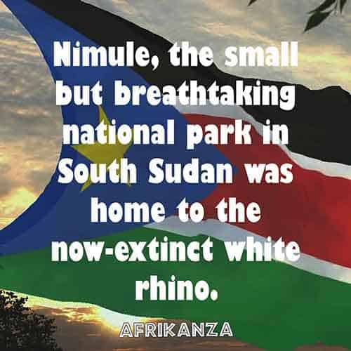 Nimule, the small but breathtaking national park in South Sudan was home to the now-extinct white rhino.