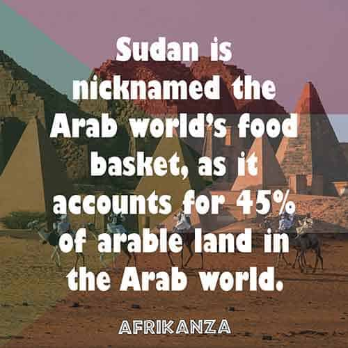 Sudan is nicknamed the Arab world's food basket, as it accounts for 45% of arable land in the Arab world.