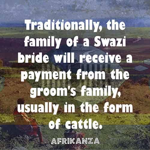Traditionally, the family of a Swazi bride will receive a payment from the groom's family, usually in the form of cattle.