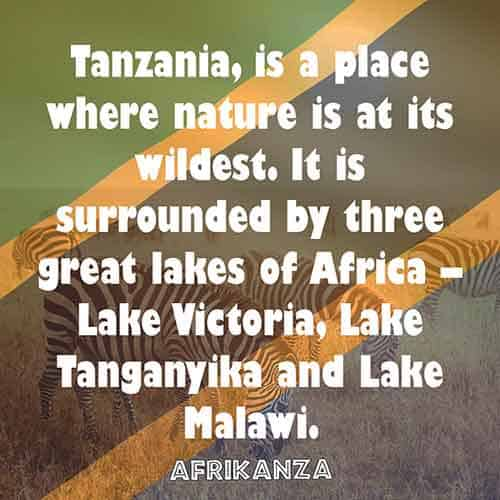 Tanzania, is a place where nature is at its wildest. It is surrounded by three great lakes of Africa – Lake Victoria, Lake Tanganyika and Lake Malawi.