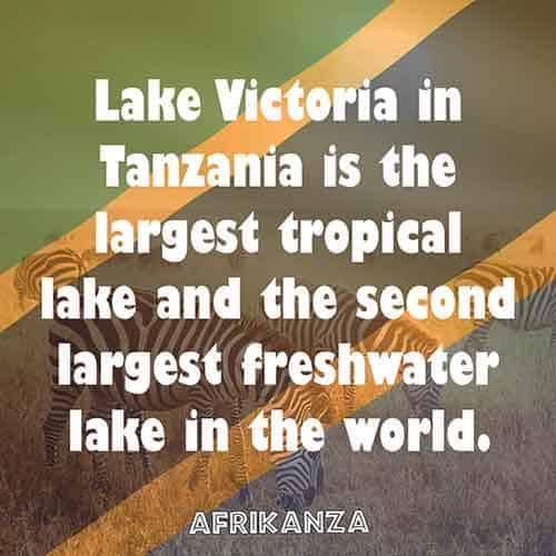 Lake Victoria in Tanzania is the largest tropical lake and the second largest freshwater lake in the world.