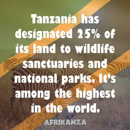 Tanzania has designated 25% of its land to wildlife sanctuaries and national parks. It's among the highest in the world.