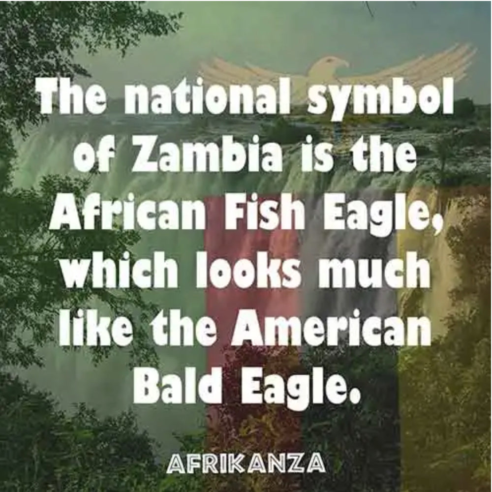 National symbol is the African Fish Eagle