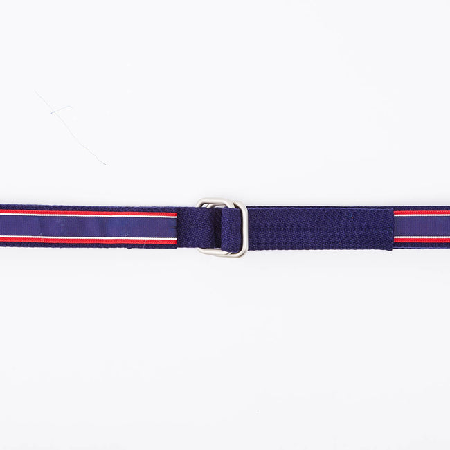 Red White & Blue Stripe Belt by One Magnificent Beast