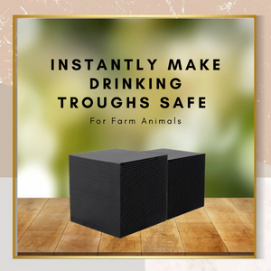[PROMO 30% OFF] Horse Trough Water Purifier Cube