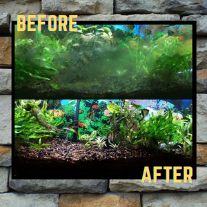 Anti-Algae Aquarium UV Blocking Film