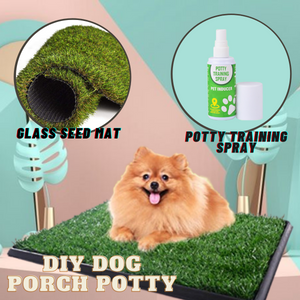 DIY Dog Porch Potty
