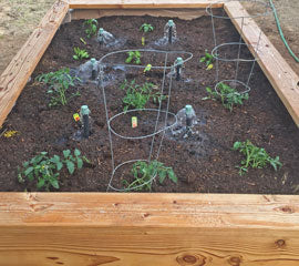 Fancy Raised Garden Bed