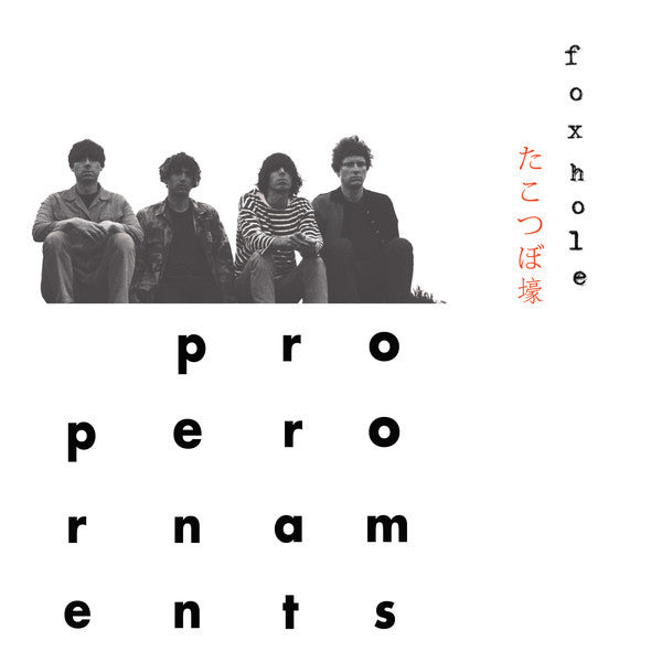 The Proper Ornaments ‎– Foxhole (Used)