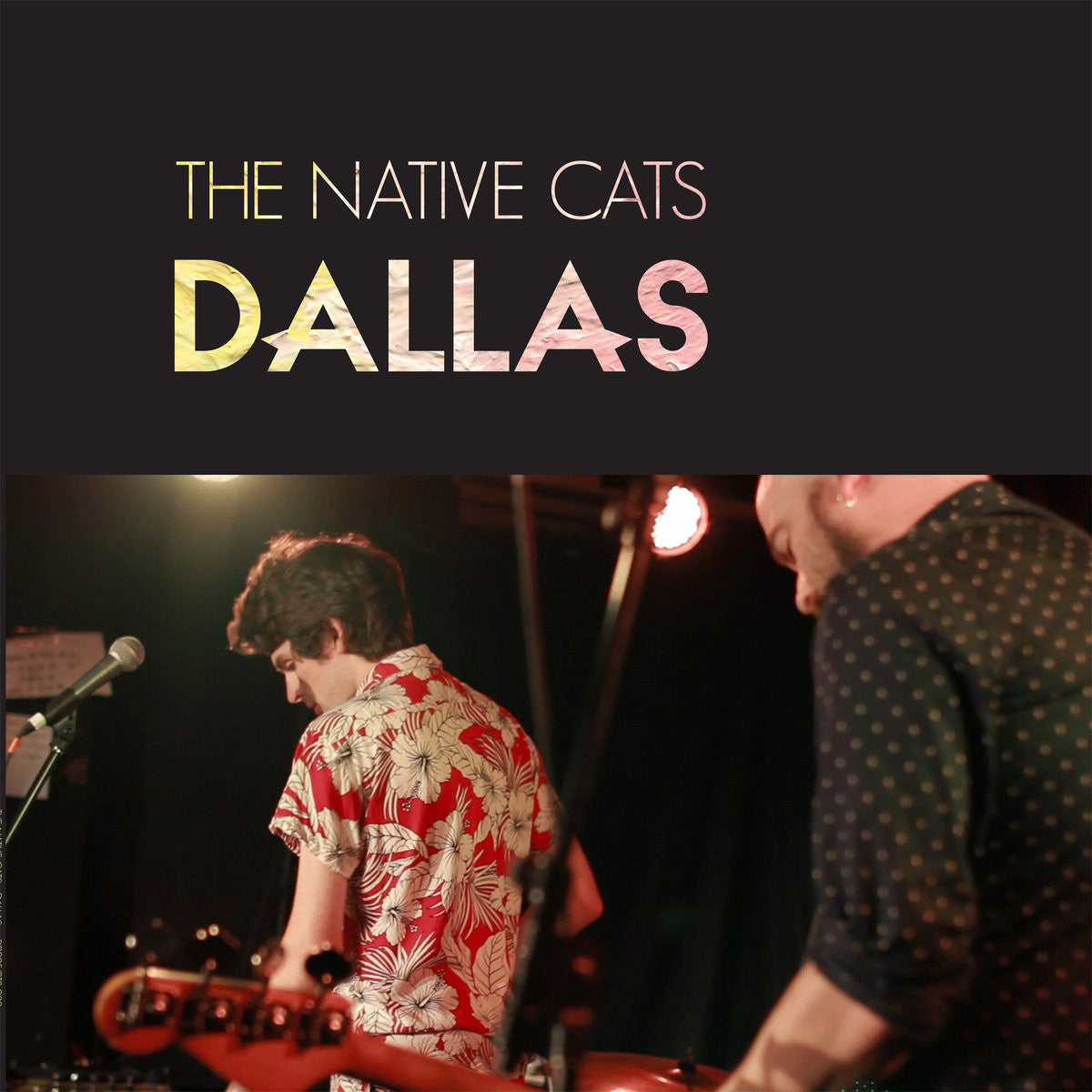 Native Cats - Dallas