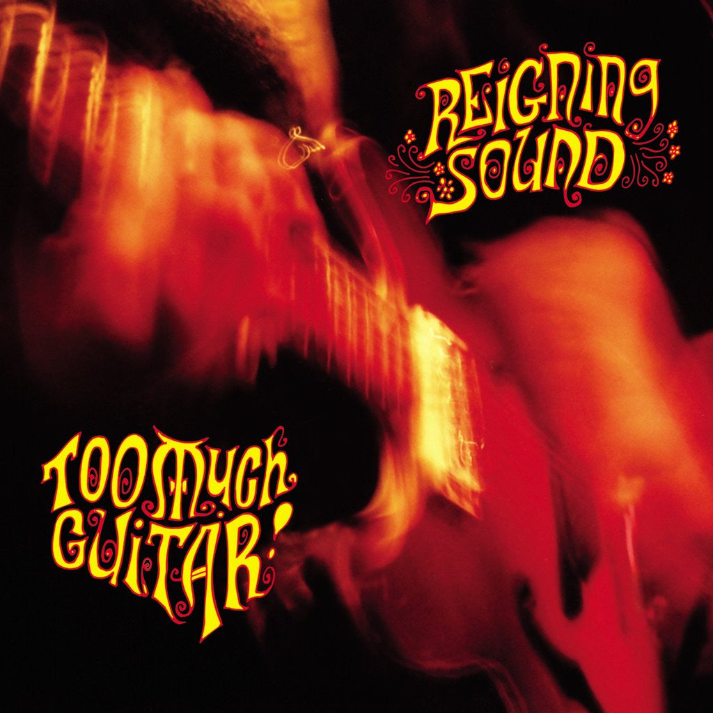 Reigning Sound - Too Much Guitar