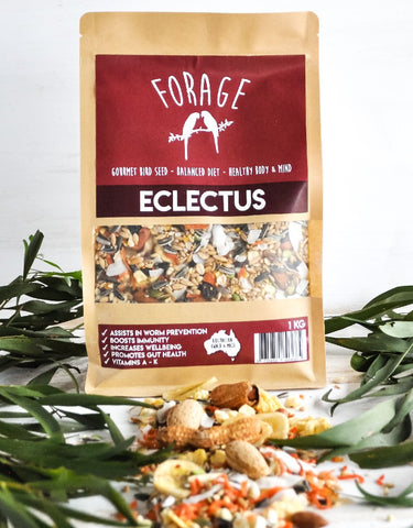 FORAGE ECLECTUS MIX