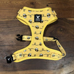 SOAPY MOOSE HARNESS BUSY BEES