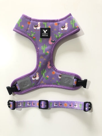 Soapy Moose Dog Harness Lovely Llamas