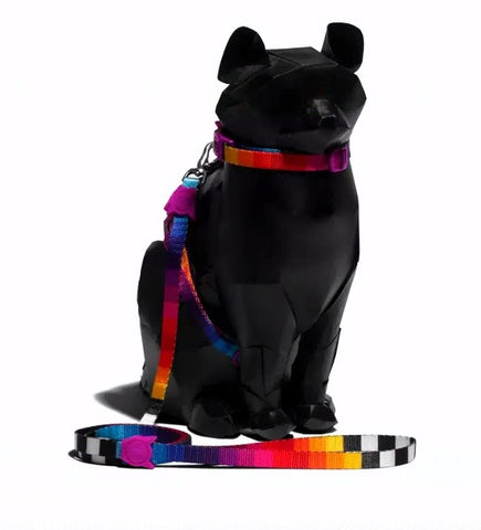 ZEE CAT PRISMA HARNESS LEASH SET