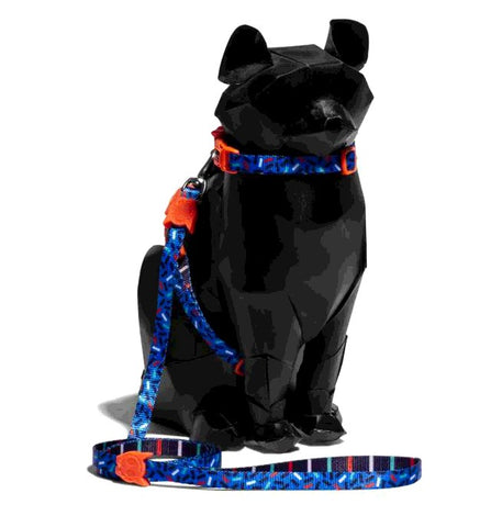 ZEE CAT ATLANTA HARNESS LEASH SET