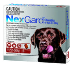 NEXGARD DOG 25.1-50KG RED