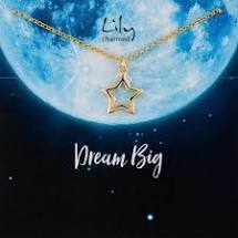 Load image into Gallery viewer, Lily Charmed 'Dream Big' Gold Star Necklace