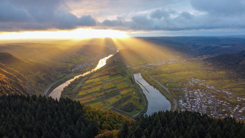 Discover great Mosel wines of 2021 by classification - Avanti Wines