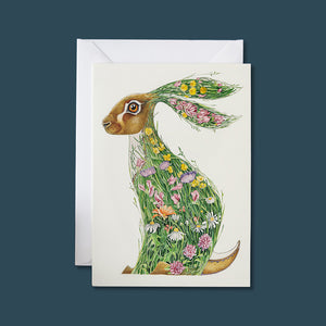 Hare in a Meadow - Card - Pack of 6