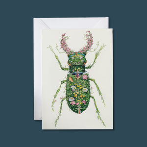 Stag Beetle - Card - Pack of 6