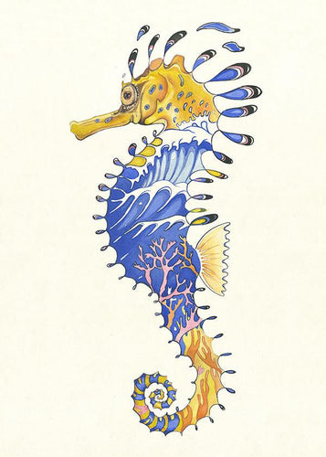 Seahorse - Card - The DM Collection