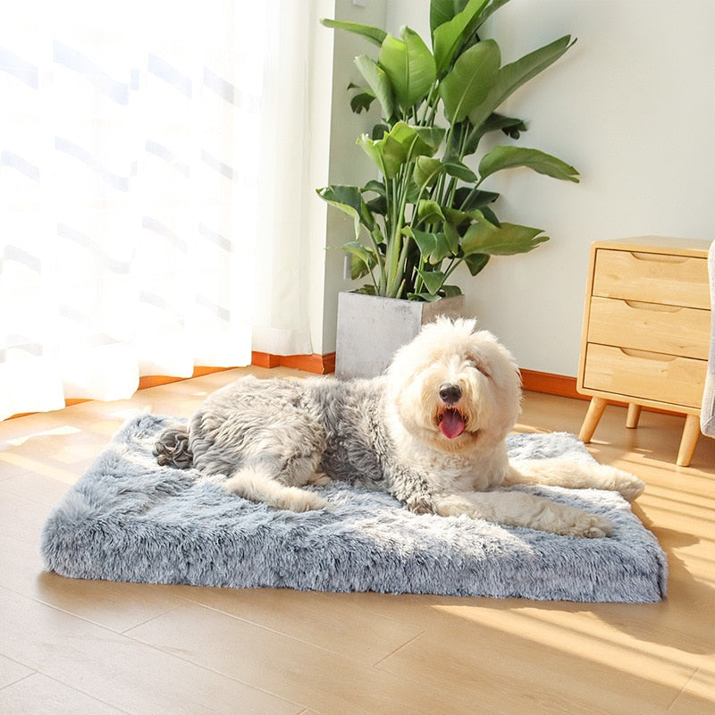 Traditional Orthopedic Foam Dog Mattress - Removable Cover!