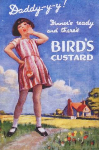 Display Card - Bird's Custard