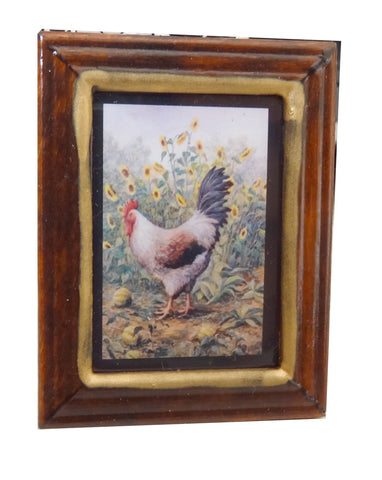 Framed Print of a Chicken