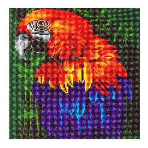 Tropical Bird Crystal Art Kit