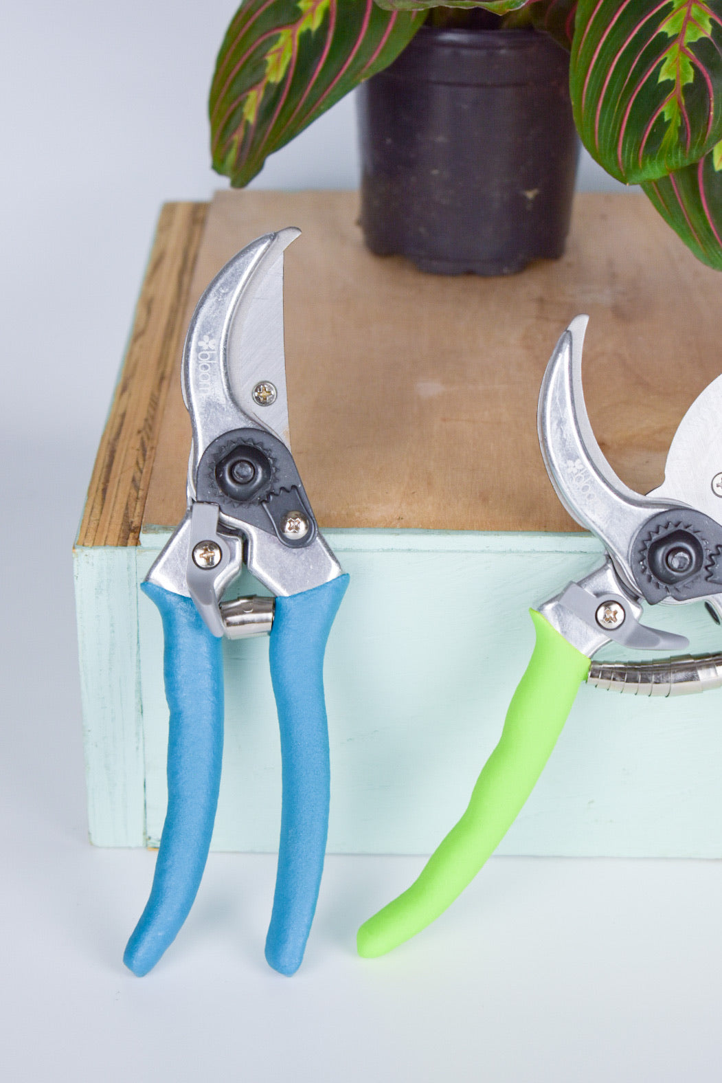 Pruning Shears (Multiple Colors)