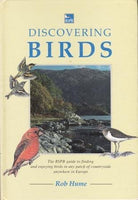 Discovering Birds by Rob Hume [used-very good] - The Real Book Shop