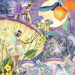 Faerie Greeting Card with CD Audio CD