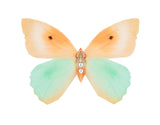 Peaches and Cream Butterfly Brooch - KUMA Design Store